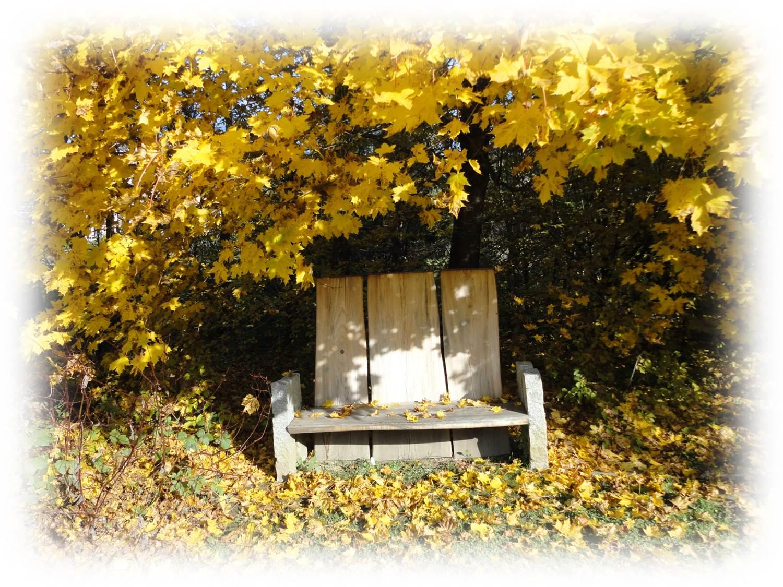 Bank Herbst